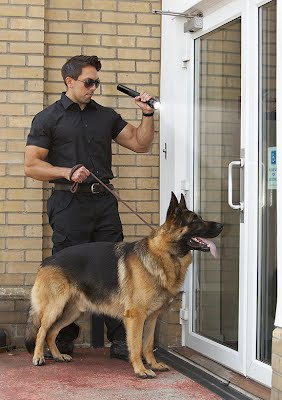 K-9 Services Fort Lauderdale